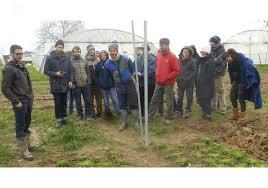 chambre d agriculture auvergne sornay le biau jardin une référence pour les maraîchers