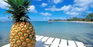 Ananas Pineapple Meme - create meme pineapple pictures meme arsenal com