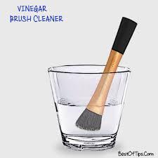 diy vinegar makeup brush cleaner