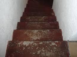 treppe mit vinyl bekleben treppenrenovierung mit vynil