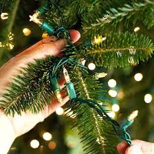 how to put lights on a tree outside hanging outdoor christmas tree lights outdoor lights design