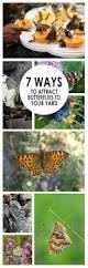 404 best green gardening images on pinterest veggie gardens