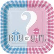 gender reveal party supplies gender reveal party supplies