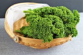 comment cuisiner le kale a la découverte du chou kale avec une recette simple de chou kale