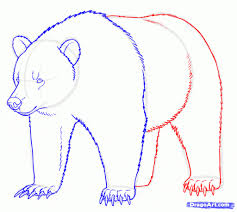 draw grizzly bear drawing pencil