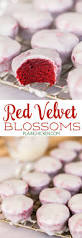 3110 best sweets images on pinterest dessert recipes kitchen