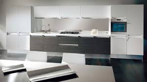 White Modern Kitchen by 100 Black And White Kitchen Ideas Before And After Kitchen