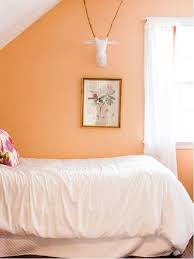 peach paint color houzz