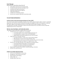 professional resume templates nzone resume 2015 with recreation