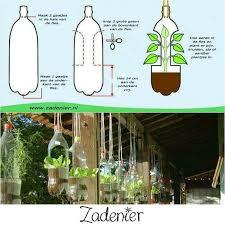 66 best grow it images on pinterest garden ideas gardening and