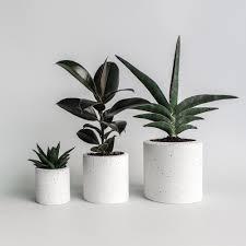 concrete planter diy concrete planter beautiful concrete planter