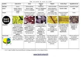 comment cuisiner les algues cuisine aux algues recettes aux algues bretagne nori wakamé