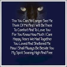 Poems Of Comfort For Loss Cat Poem Neko Ni Katsuobushi Pinterest Cat Poems And Cat