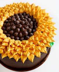 Simple Cake Decorating Best 25 Simple Cakes Ideas On Pinterest Simple Cake Decorating