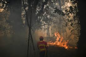 Wildfire Radio by Raging Forest Fire Kills 61 In Portugal Many As They Fled