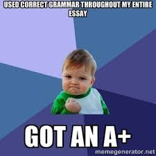 Meme Grammar - english grammar memes printables and classroom decor tpt