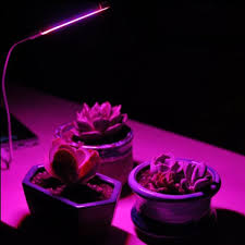 red and blue led grow lights usb 5v 2 8w 14 led indoor anti sun red blue light grow light for