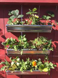 vertical garden ideas how to grow vegetables in a vertical garden