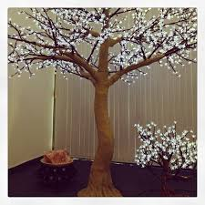 8 best led trees images on tree lighting balcony and