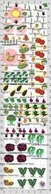 companion planting layout garden vegetables pinterest