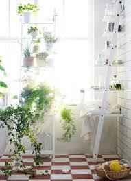 garden bathroom ideas bathroom bathroom window garden ideas 5 smart thinking ways to