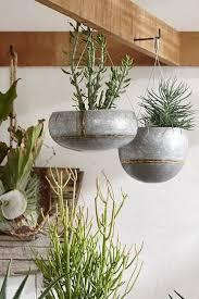 Hanging Plants For Patio Best 25 Indoor Hanging Planters Ideas On Pinterest Indoor
