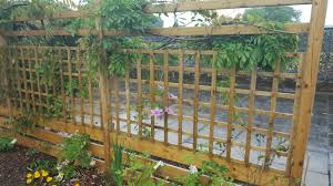 trellis u2013 denbigh timber products