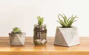 Rectangular Succulent Planter by 15 Unique And Creative Succulent Planter Ideas Garden Lovers Club
