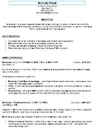Staff Accountant Resume Sample Resume Examples Bar Work
