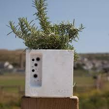 Concrete Planter Beepot Mini Concrete Planter Green U0026blue