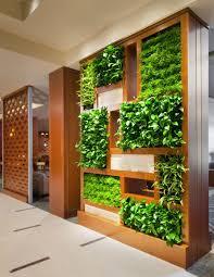 indoor vertical gardens gardening ideas