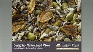 native iowa plants designing seed mixes for native habitat youtube