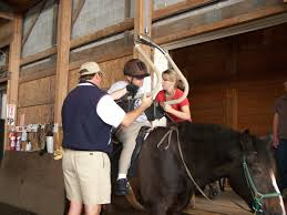 Animal Trainers Salary Therapeutic Riding Instructor Salary U0026 Job Information U003e Career