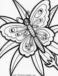 Bbutterfly Coloring Pages B And Drawings Color Thingkid
