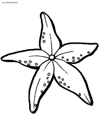 starfish clipart coloring coloring