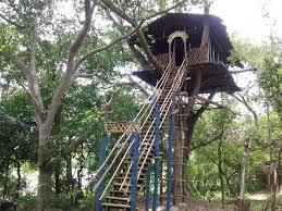 20 magical treehouse rentals for u0027the jungle book u0027 fanatics