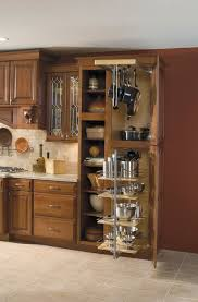 Under Cabinet Shelving by Kitchen Cabinet Organizers For Pots And Pans Fresh Kitchen Under
