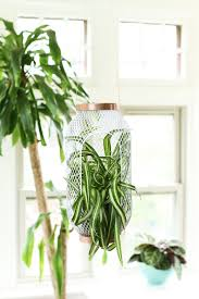 Ikea Hanging Planter by Lantern To Planter A Super Easy Ikea Toppig Hack Apartment Therapy