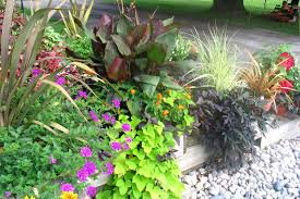 quotes about gardens gardeners and flowers 3