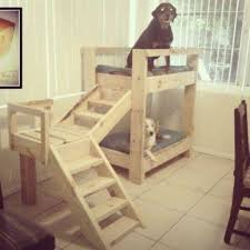 Doggie Bunk Beds Bunk Beds Best Ideas Easy