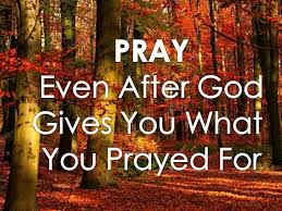 Thanksgiving Pray 65 Best Prayer Images On Pinterest Bible Quotes Faith Quotes