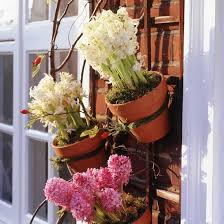 Garden Trellis Ideas 10 Of The Best Country Backyard Trellis Pot Plant Trellis Garden Trellis