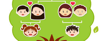3 simple steps to find your family tree news