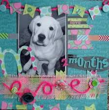colorbok scrapbook 8 best colorbok layouts images on scrapbooking layouts
