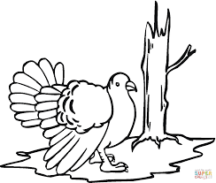 coloring turkey page free wild turkey coloring page free printable coloring pages