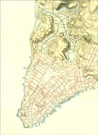 Clear Maps History Mannahatta A Natural History Of New York City The Globe And Mail