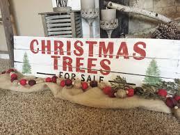 100 christmas tree seedlings wholesale sloan nursery u0026