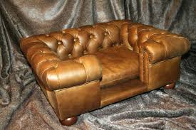 Leather Sofa And Dogs Picturesque Dogs And Leather Sofas Images Gradfly Co