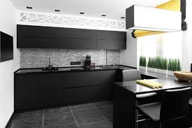 Matte Black Kitchen Cabinets Interior Of Modern European Kitchen Startling Matte Black Kitchen