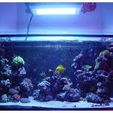 aquarium lights for sale 22 best led aquarium lighting images on pinterest aquarium led